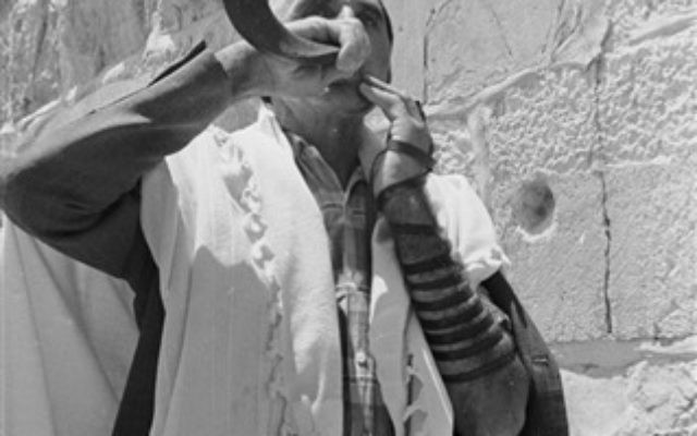 A man blows the ram's horn shofar at the Western Wall, June 22, 1967. (From the collection of Dan Hadani, National Library of Israel).