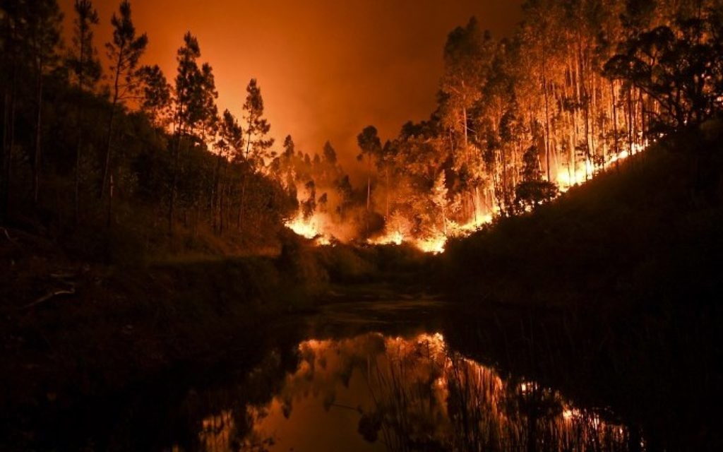 A wildfire is reflected in a stream at Penela, Coimbra, central Portugal, on June 18, 2017. (AFP PHOTO / PATRICIA DE MELO MOREIRA)