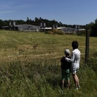 A woman and a child stand next to the fence of the industrial pig farm situated at the site of a former concentration camp in Lety, Czech Republic, on June 24, 2017. (Michal Cizek/AFP)