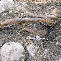 The lower limbs of a Neanderthal exposed at the open-air site of Ein Qashish, on the banks of the Kishon River in northern Israel. (Erella Hovers, courtesy, the Hebrew University of Jerusalem)