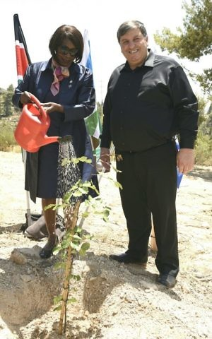 Professor Judi Wakhungu, Kenya's Cabinet Secretary (Minister) for Environment and Natural Resources and KKL-JNF World Chairman, Danny Atar, plant a carob tree together on June 27, 2017 near the Yad Kennedy memorial. (Avi Hiun, KKL-JNF)