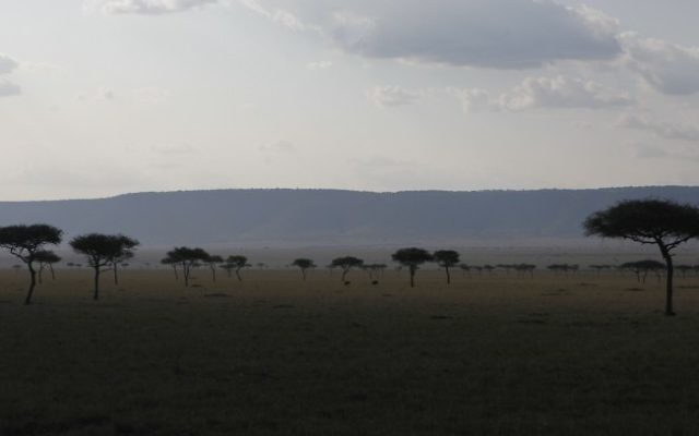 View of the Maasai Mara National Reserve, a large game reserve in Narok County, Kenya on September 3, 2014. (Haim Shohat/Flash90)