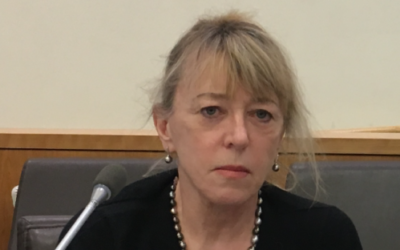 Jody Williams, Nobel Peace Laureate, delivered the keynote address at the UN Forum to Mark Fifty Years of Occupation, June 30, 2017. Cathryn J. Prince)