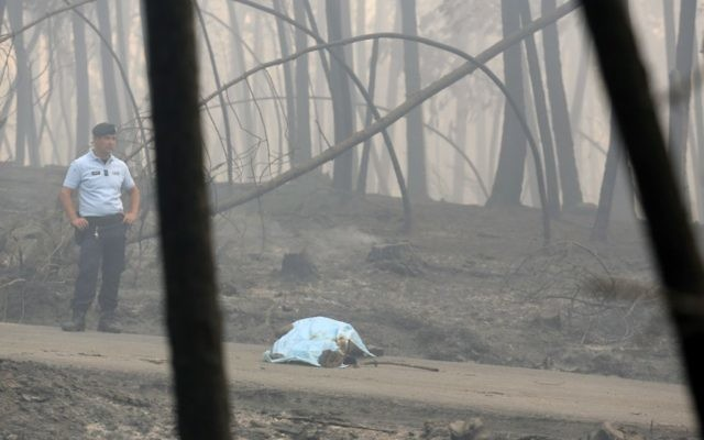 62 dead in central Portugal wildfire disaster | The Times of
