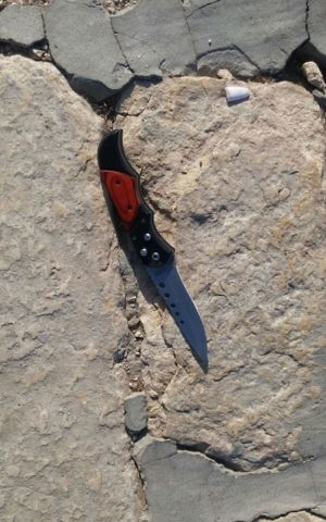 A knife that was carried by one of the terrorists who carried out a shooting attack that left two Israeli seriously wounded near the Temple Mount in Jerusalem's Old City on July 14, 2017. (Israel Police)
