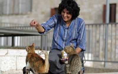 Tova Saul, an Orthodox Jew, feeds stray cats in a neighborhood in Jerusalem's Old City, on July 12, 2017. (AFP PHOTO / THOMAS COEX)