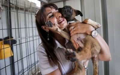 Diana Babish, an ex-banker from the Palestinian city of Bethlehem, carries a dog at the first dog shelter in the West Bank, in the town of Beit Sahour, on August 25, 2017. (AFP Photo/Musa Al Shaer)
