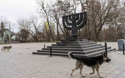 Stray dogs roam the Babi Yar monument on March 14, 2016 in Kiev, where Nazis and local collaborators murdered 30,000 Jews in 1941. (Cnaan Liphshiz/JTA)