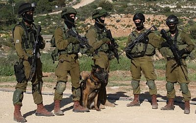 Illustrative photo of IDF soldiers with a trained army dog during a drill, April 2, 2014. (Gershon Elinson/Flash 90)