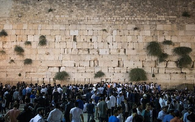 Jewish men pray at the Western Wall in the Old City of Jerusalem, on July 31, 2017 to mark the beginning of Tisha B'av. (Yonatan Sindel/Flash90)
