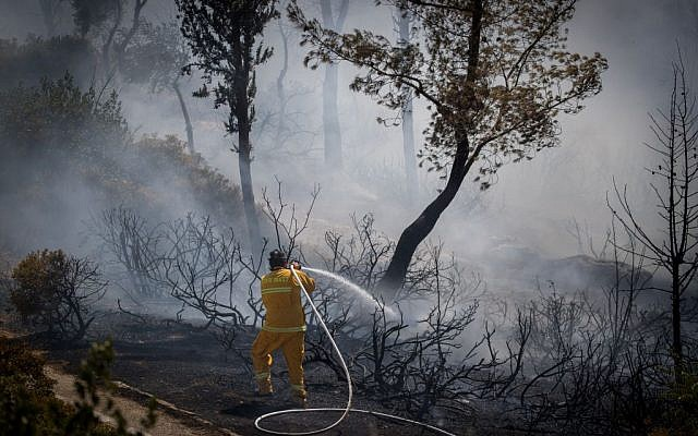 Firefighters try to extinguish a fire in the Valley of the Cross in Jerusalem on August 5, 2017. (Yonatan Sindel/Flash90)