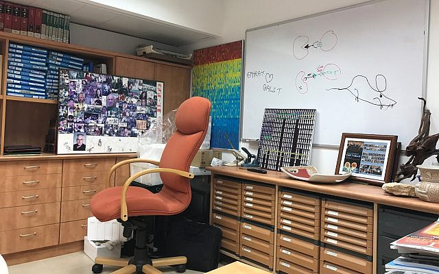 Prof. Zelig Eshhar's office at the Weizmann Institute of Science. The whiteboard has an image of a mouse and cells. (Shoshanna Solomon/Times of Israel)
