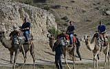 Benjamin Netanyahu, left, rides on a camel with his sons Avner Netanyahu, center, and Yair Netanyahu on April 8, 2015. (Amos Ben Gershom/GPO)