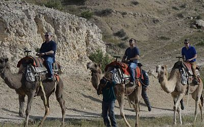 Benjamin Netanyahu, left, rides on a camel with his sons Avner Netanyahu, center, and Yair Netanyahu on April 8, 2015. (Amos Ben Gershom/GPO)