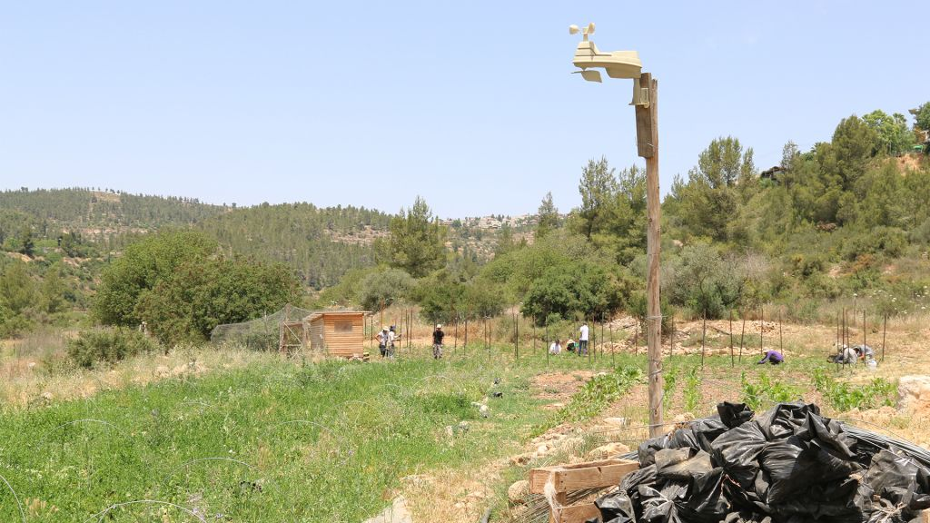 There are three Kaima farms located in different parts of the country, with two more on the way. (Shmuel Bar-Am)