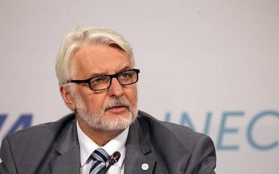 Polish Minister of Foreign Affairs, Witold Waszczykowski, speaks during a press conference in Budapest, Hungary, August 31, 2017. (AFP/Peter Kohalmi)