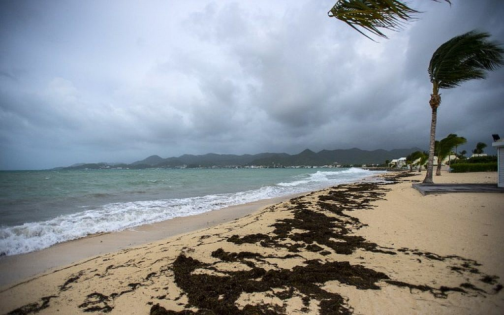 A picture taken on September 5, 2017 shows a view of the Baie Nettle beach in Marigot, with the wind blowing ahead of the arrival of Hurricane Irma. (AFP Photo/ Lionel Chamoiseau)