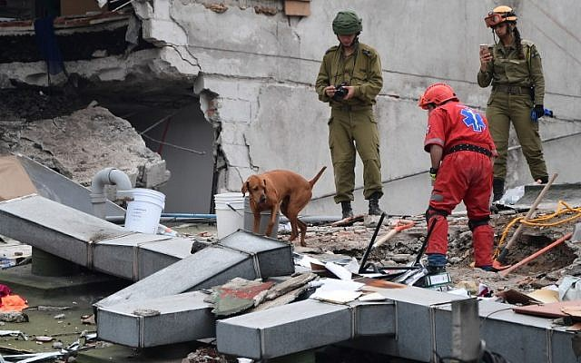 Rescuers from Israel (in olive green) register the moves of a sniffer dog as they join the search for survivors in a flattened building in Mexico City on September 21, 2017 two days after a strong quake hit central Mexico. (AFP / Ronaldo SCHEMIDT)