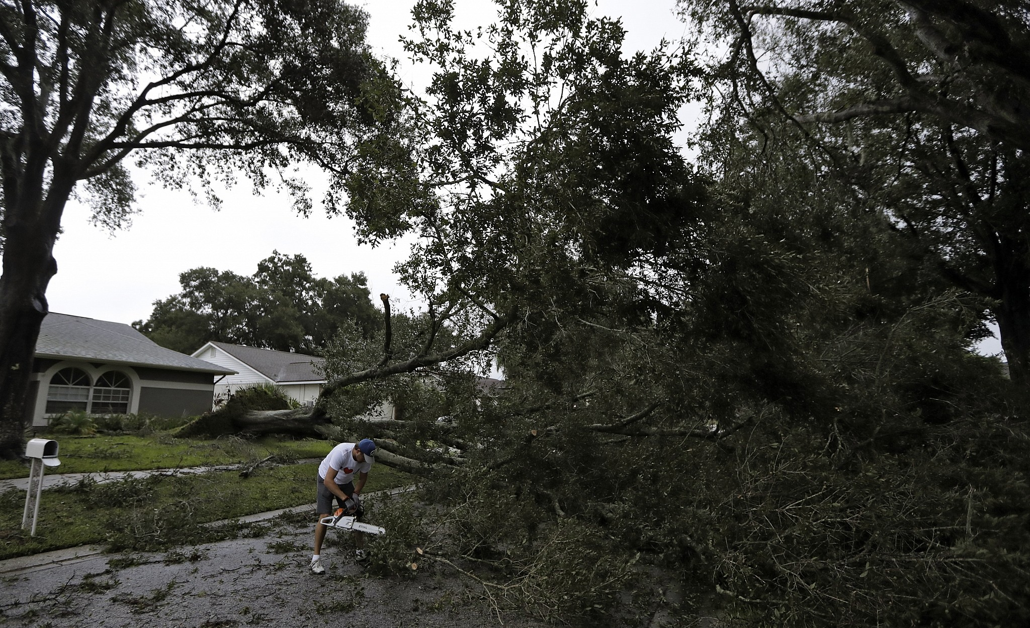 Irma knocks out power to about 600000 customers in Florida