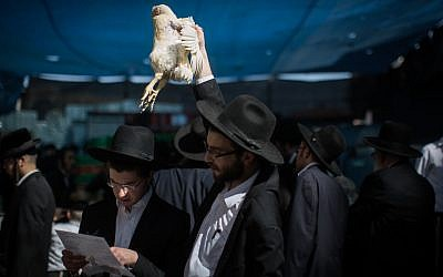 Ultra Orthodox Jews perform the Kaparot ceremony on September 28, 2017, in Jerusalem. Hadas Parush/Flash90)
