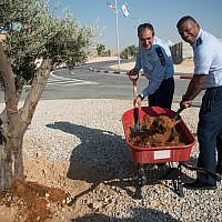 Brig. Gen. Tzvika Haimovitch, the head of Israel's Aerial Defense Command, left, plants a tree with Lt. Gen. Richard Clark, commander of the US 3rd Air Force, to mark the establishment of the first American military base in Israel inside the Mashabim Air Base in southern Israel on September 18, 2017. (Israel Defense Forces)