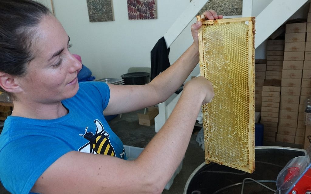 Shoresh director of engagement Sabrina Malach explains how bees cap the honey with wax and how volunteers remove it before jarring the honey. (Dana Wachter/Times of Israel)