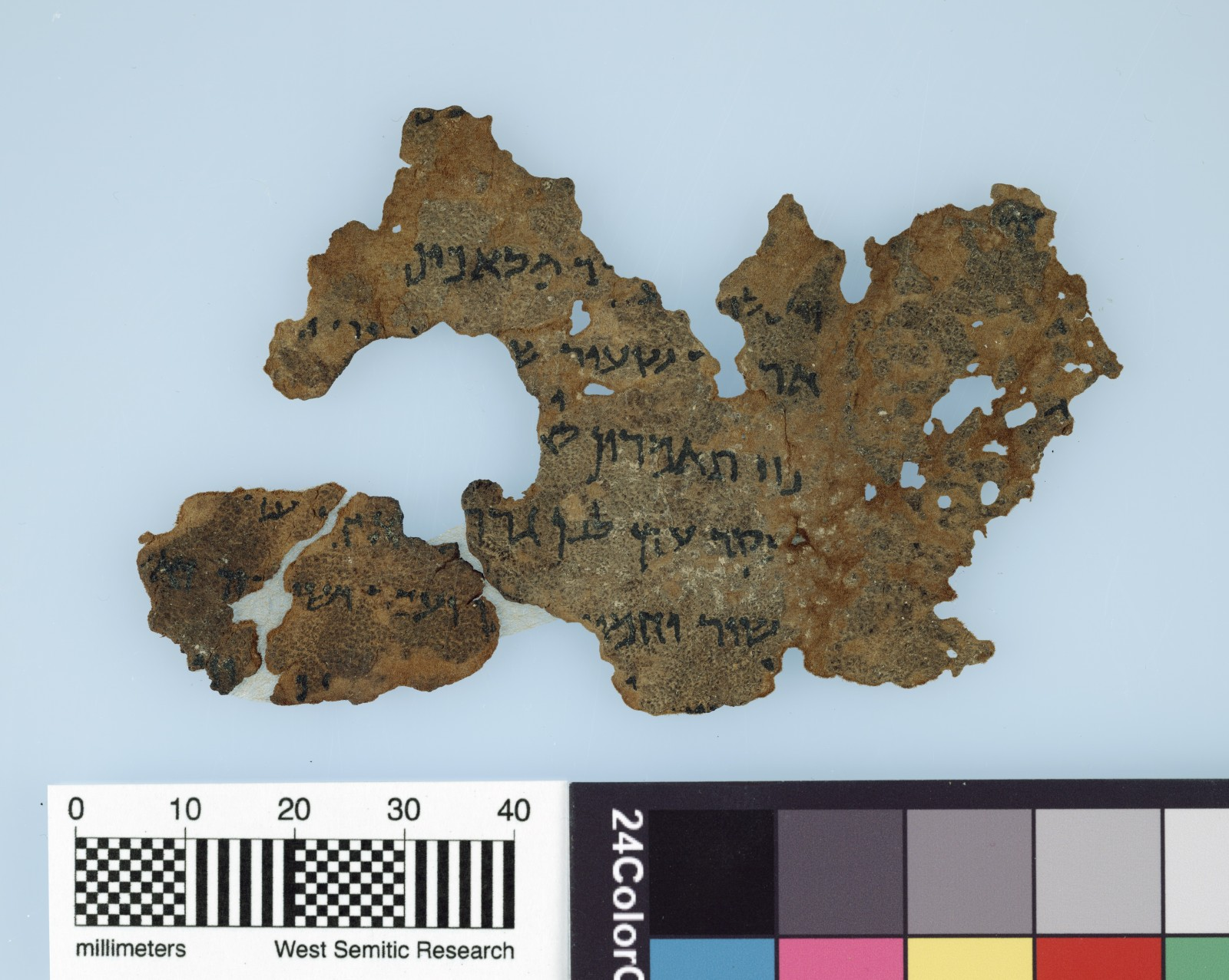 U.S.  museum says 5 fragments in Dead Sea Scroll collection are fake
