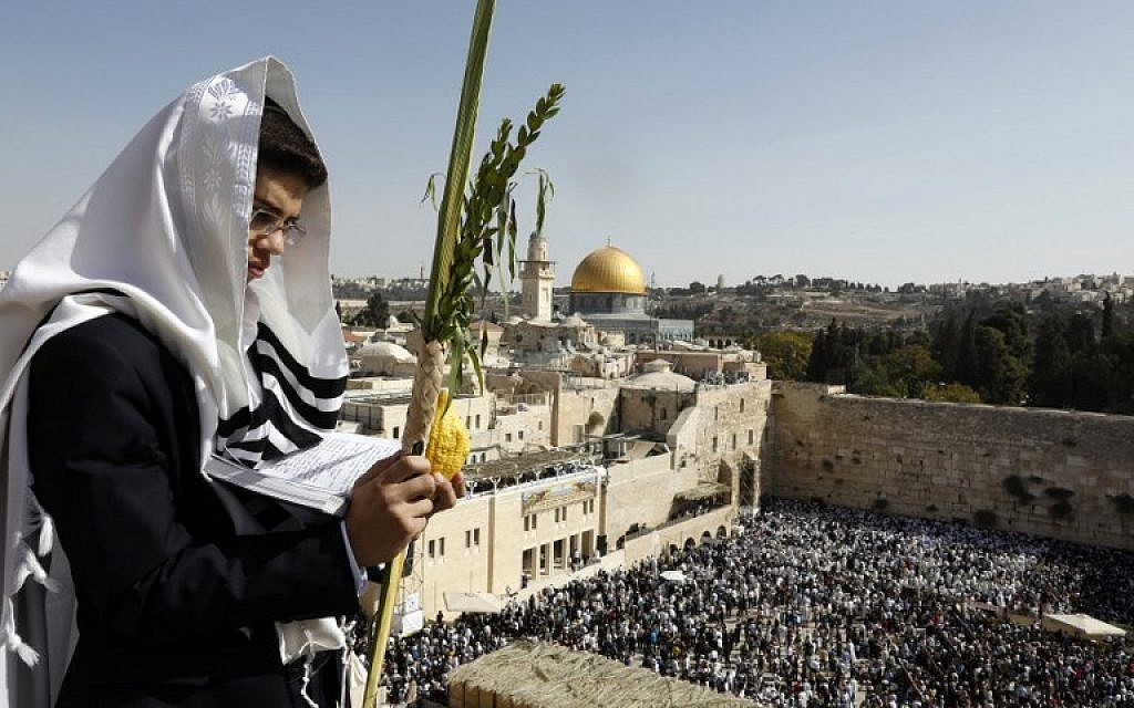 A Jewish worshiper holds the four plant species as he attends the annual priestly blessing during the Sukkot holiday at the Western Wall in the Old City of Jerusalem on October 8, 2017. (AFP Photo/Menahem Kahana)