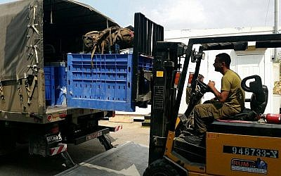 Illustrative. A forklift operator loads equipment onto a truck on an IDF base. (Israel Defense Forces/Flickr)