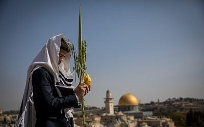 Illustrative: A Jewish worshiper holds the four plant species as he attends the annual priestly blessing during the Sukkot holiday at the Western Wall in the Old City of Jerusalem on October 8, 2017. (Yonatan Sindel/Flash90)