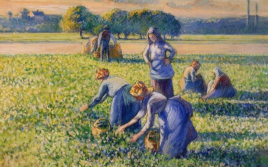 France confirms restitution of Pissarro looted from Jewish collector in WWII