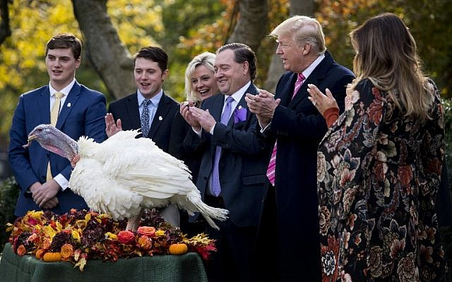 US President Donald Trump pardons Thanksgiving turkey Drumstick in the Rose Garden of the White House in Washington, DC,as First Lady Melania Trump(R) applauds on November 21, 2017.(AFP PHOTO / JIM WATSON)