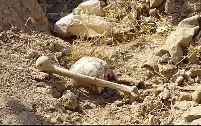 Bones lie on the ground in an area recently retaken from the Islamic State group, at an abandoned base near the northern town of Hawija, Iraq, November 11, 2017. (Kirkuk Governor's Office via AP)