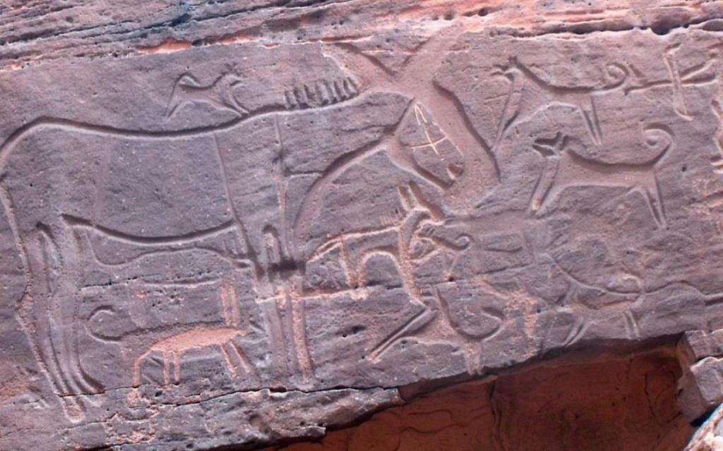 Panel 105 at Shuwaymis in Saudi Arabia, showing a circa 8,000-year-old hunting scene with an equid and its young, surrounded by dogs. (Journal of Anthropological Archaeology)