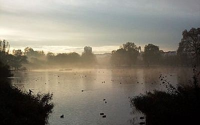 A lake in Regent's Park, where a Jewish teen was seriously injury in a stabbing by a group of men on November 14, 2017. (Wikimedia Commons via JTA)