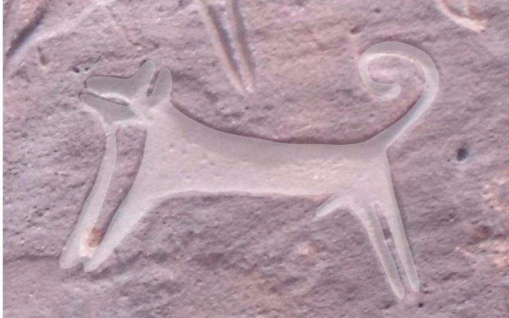 Dog depiction in the rock art of Saudi Arabia's Shuwaymis site shows a dog with chest coloration typical for Canaan dogs. (Journal of Anthropological Archaeology)