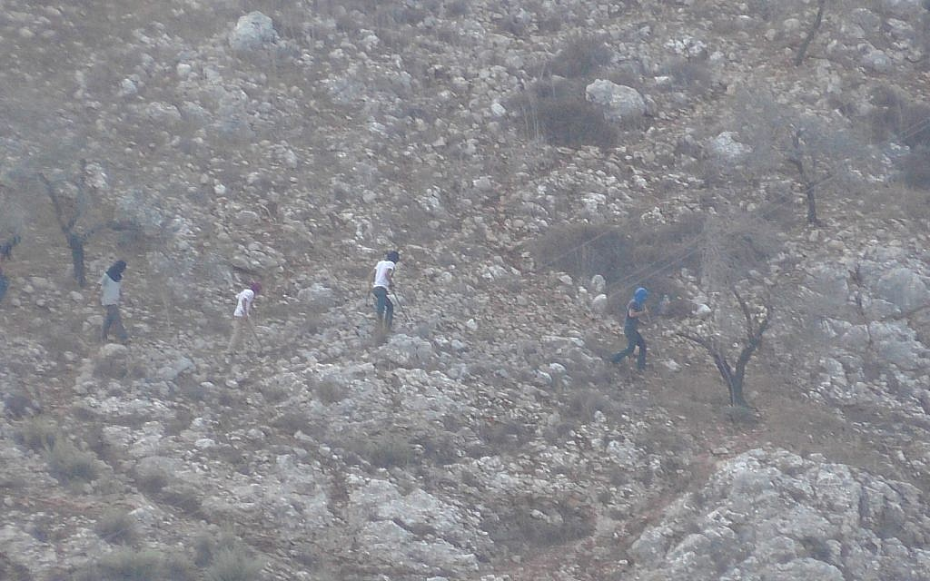 Settlers clash with Palestinians during IDF-approved olive