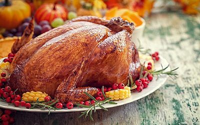 Illustrative: Thanksgiving turkey. (iStock)