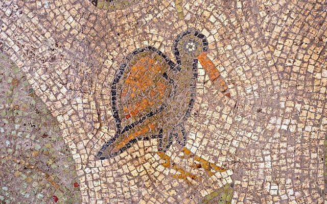 Mosaic floor found at a Byzantine-period church complex found in Ramat Beit Shemesh, 2017. (Assaf Peretz, Israel Antiquities Authority)