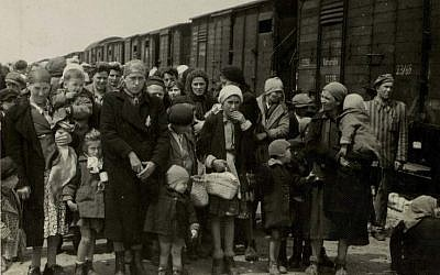 At Auschwitz-Birkenau in May of 1944, Hungarian Jews arrived in cattle cars and prepared for the SS-conducted 'selection' (Auschwitz Album)