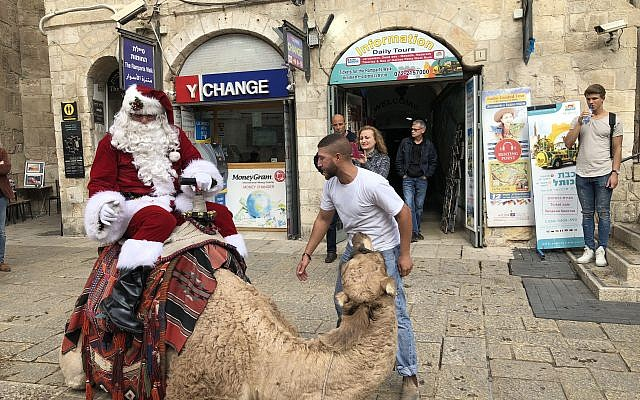 Issa Kassissieh climbs astride the camel he uses instead of a sleigh as Jerusalem Santa (Jessica Steinberg/Times of Israel)