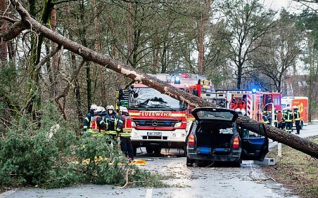 Firefighters and rescue teams stand next to a car on which a tree fell due to heavy storms on January 18, 2018 in Bielefeld, western Germany. (AFP Photo/dpa/Christian Mathiesen/Germany OUT)