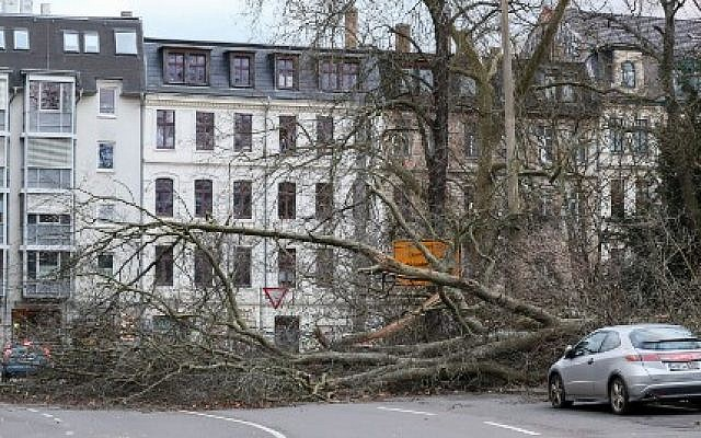 A fallen tree blocking a road Leipzig, in eastern Germany after the region was hit by strong winds, January 18, 2018. (AFP Photo/ dpa/Jan Woitas/Germany OUT)