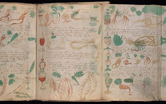 A foldout illustration from page 88v of the Beinecke MS 408, aka the Voynich Manuscript. (Yale University's Beinecke Rare Book and Manuscript Library)