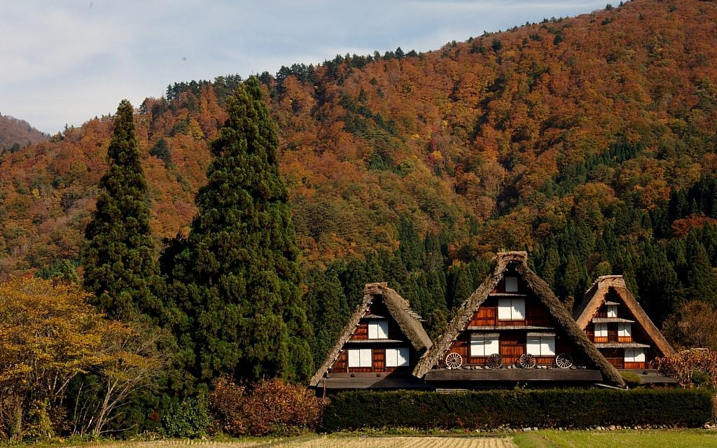 Fall foliage in Japan's UNESCO world heritage site, Shirakawago. (courtesy)