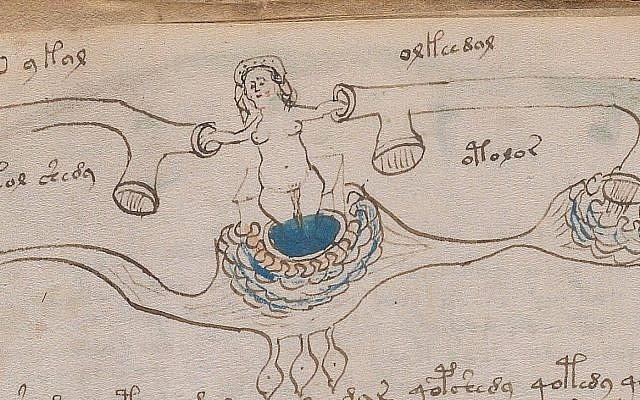 An 'anatomical' illustration from Beinecke MS 408, aka the Voynich Manuscript. (Yale University's Beinecke Rare Book and Manuscript Library)