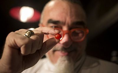 "In this Jan. 4, 2018 photo, chef Shaul Ben Aderet holds up a small ""drop tomato"" at a restaurant in Tel Aviv, Israel. (AP Photo/Ariel Schalit)"