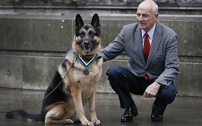 John Wren from New York, who was 4-years-old when Chips the family pet dog returned from the war effort, with military working dog Ayron, who received the PDSA Dickin Medal, the animal equivalent of the Victoria Cross, on Chips' behalf, in London on January 15, 2018. (AP Photo/Kirsty Wigglesworth)