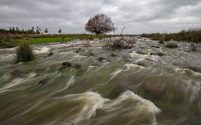 Heavy waters stream in the Golan Heights on January 26, 2018. (Maor Kinsbursky/Flash90)