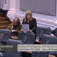 Irish Senator Frances Black speaks ahead of of a Senate vote on the Control of Economic Activities (Occupied Territories) Bill 2018, January 30, 2018 (screenshot www.oireachtas.ie)